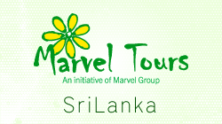 Marvel Tours Office Srilanka