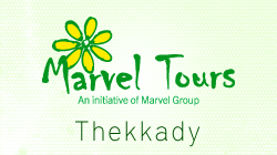 Marvel Tours Office Thekkady