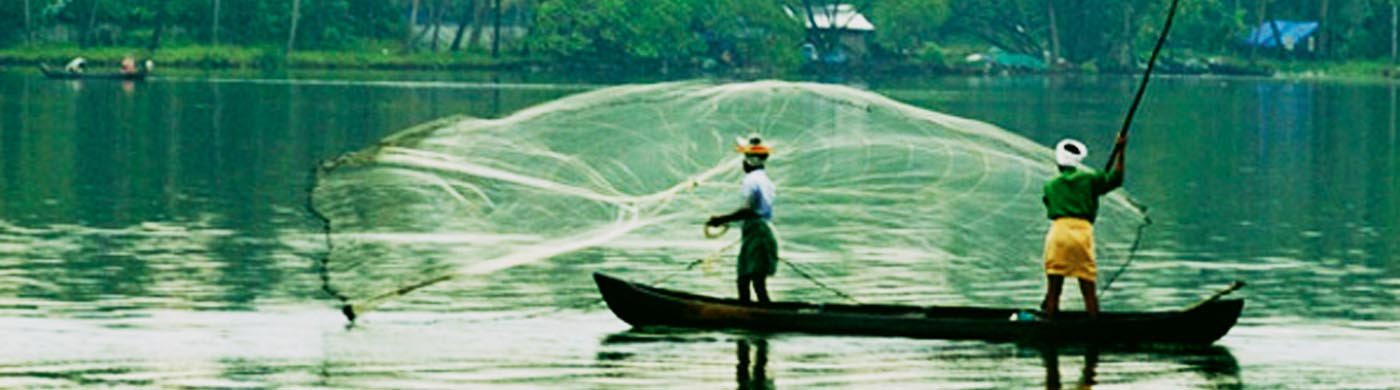 Catch fish like a Local in Kumarakom Marvel Tours Packages